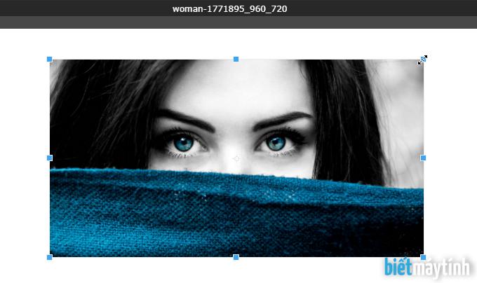 hướng dẫn cắt ảnh bằng photoshop online