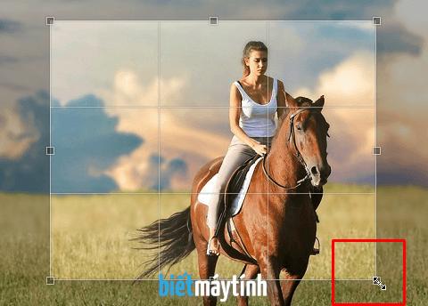 Cắt ảnh bằng phần mềm chỉnh sửa ảnh online