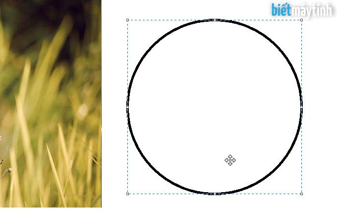 Cắt ảnh hình tròn bằng Paint